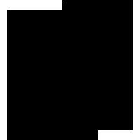 ico-Montributari-conflictos